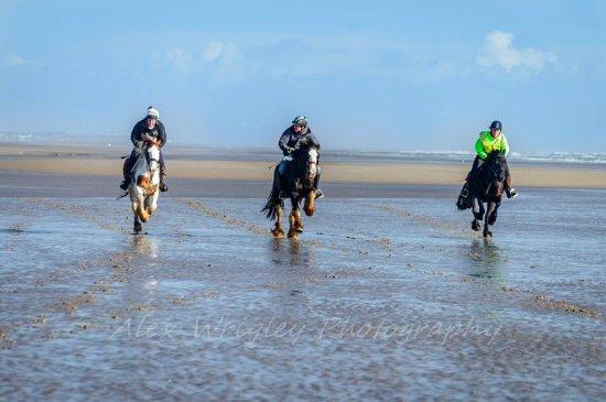 Murthwaite Green Trekking Centre Day Rides: Galloping along Silecroft Beach