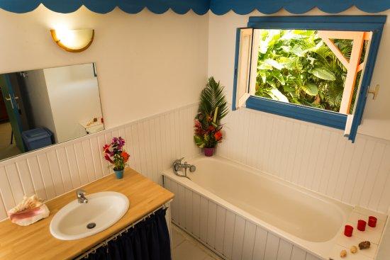 Les Jardins de Pointe Noire : Villa Hibiscus, salle de bains avec baignoir et Douche