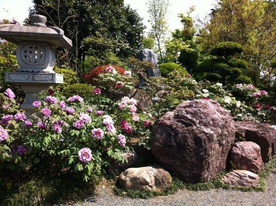 Ryushin-ji Temple