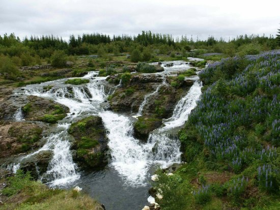 Laugardalur Park: small waterfalls