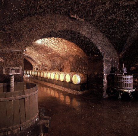 Caves St Martin : barriques