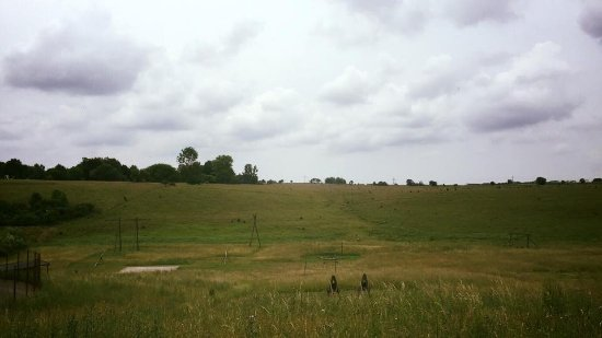 Farm Shack Bbq