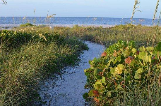 Ocean's Reach Condominiums: Beach access path.
