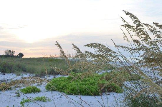 Ocean's Reach Condominiums: Morning at the beach.