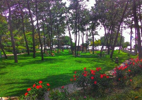 Hapimag Resort Sea Garden: P_20160625_161925-01_large.jpg