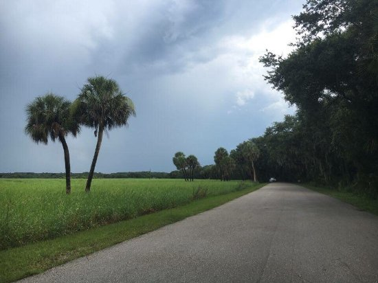 Myakka River State Park: photo9.jpg