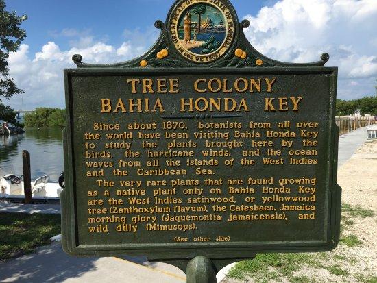 Bahia Honda State Park and Beach: photo1.jpg