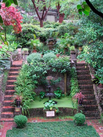 Gibraltar Botanic Gardens (The Alameda): The Dell