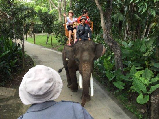 Bali Zoo: photo1.jpg