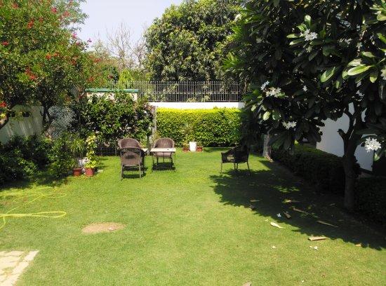 Silver Oak: Garden