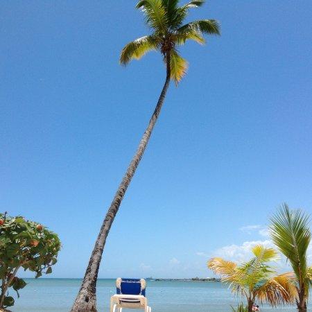Just Relax And Enjoy Picture Of Bahia Principe Grand La Romana