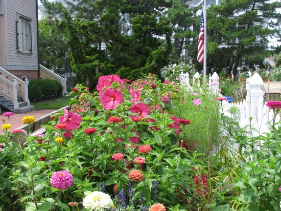 Hereford Inlet Lighthouse: Front garden of Herefords Inlet