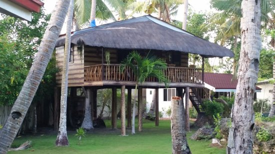 Cabilao Island, Filipinas: The tree house, available but there's no air condition for it.