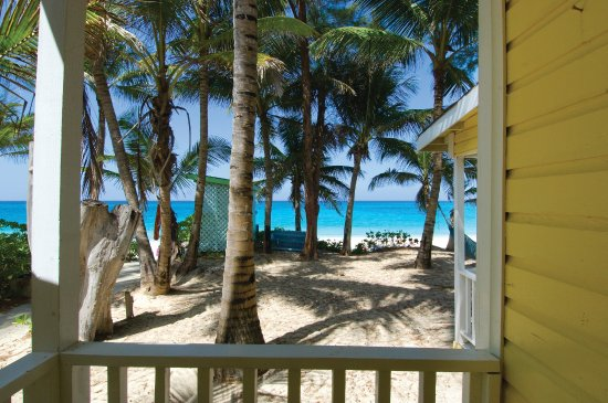 Sivananda Ashram Yoga Retreat: View From the Beach Hut Porch