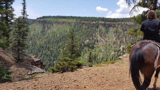 Crazy Horse Outfitters and Guides - Day Tours: Views from above Piedra River; Two Hour Trail Ride with Crazy Horse Outfitters