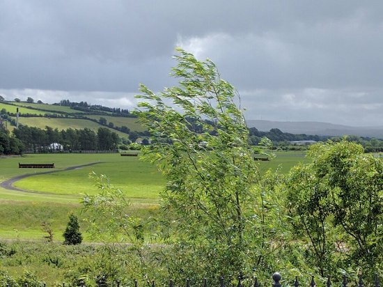 Island View Bed & Breakfast: Delightful little Irish town, friendliest BnB owner