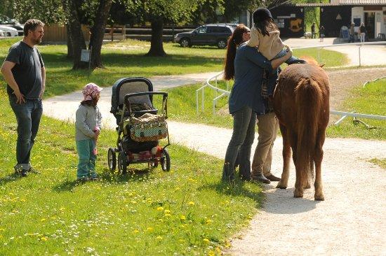 Ampflwang, Austria: Spaß auch für die Minis