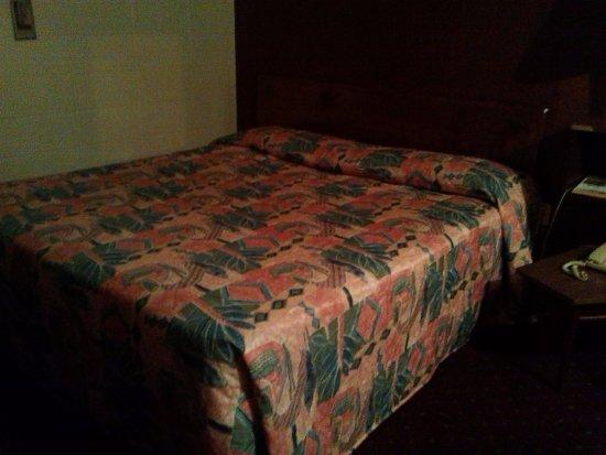 Hamilton, AL: pillows were a bit flat, so bring your own