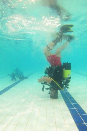 Immerse School of Diving