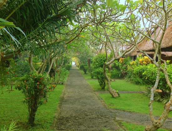 Anom Beach Inn Bungalows: Tropical garden with bungalows to the right