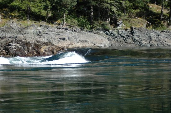 Campbell River, Canada: Ocean wave as the tide changes