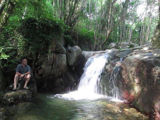 Camping les illes montseny provincia de barcelona for Les piscines del montseny