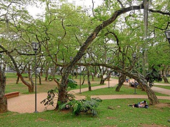 San Pio Park