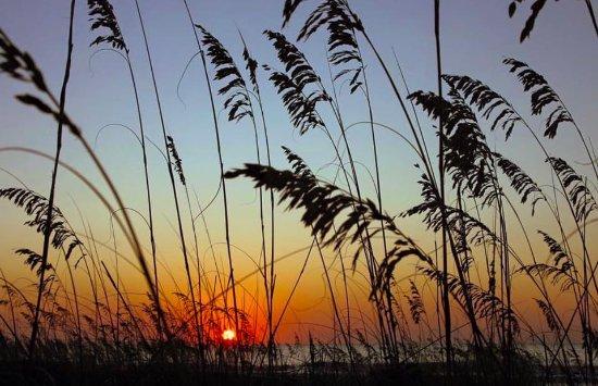 Hampton Inn Hilton Head: Sunrise