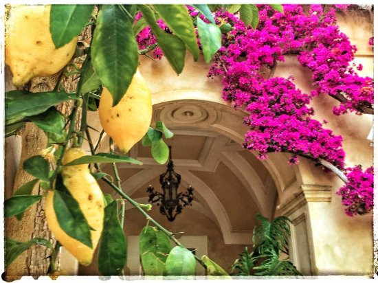 Hotel Palazzo Murat Picture