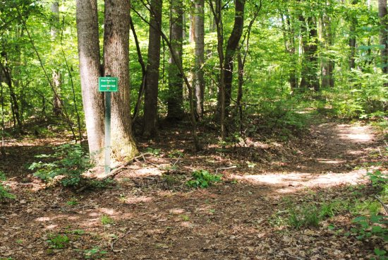 Ridgeway, VA: Trails are easy to follow, well marked