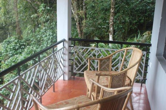 Balcony - Picture of The Tall Trees Munnar, Pothamedu - Tripadvisor