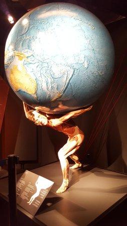 MeMu Menschen Museum