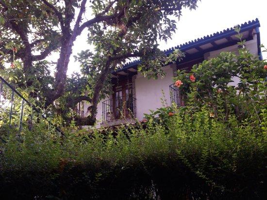 Posada Casa Sol: Para ir a mi habitación debía atravesar este jardín de cuento, por el que pululan los colibríes