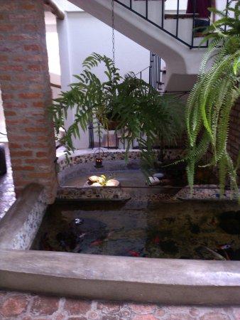 Foto de posada casa sol m rida una fuente con peces y for Fuentes con peces