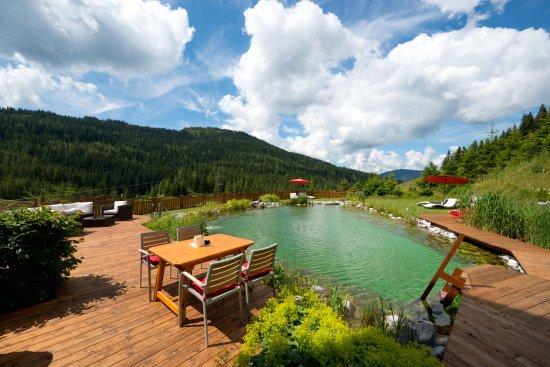 Birgkarhaus Hotel: Pond
