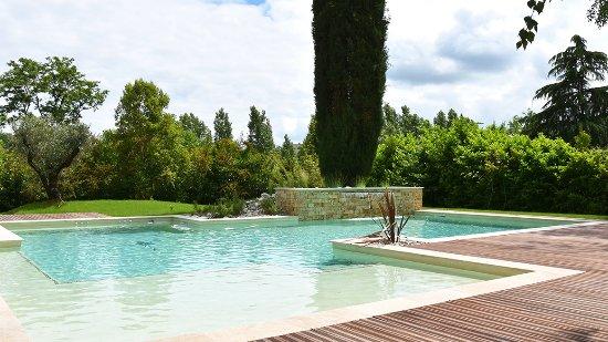 l'autre rives maison d'hôtes design albi, piscine - photo de l