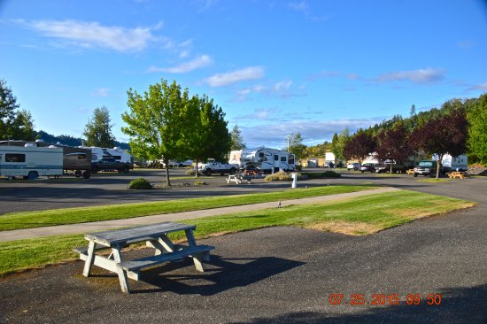 Rice Hill, OR: Camp Ground