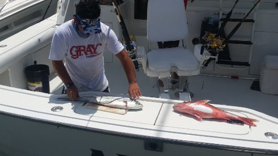 Cancun Fishing Tours: Filets to go