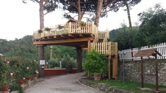 Agriturismo baldi franco podere santa rita serravalle for Cantagrillo piscine