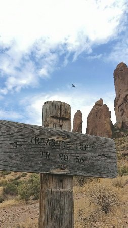 Lost Dutchman State Park: Treasure Loop
