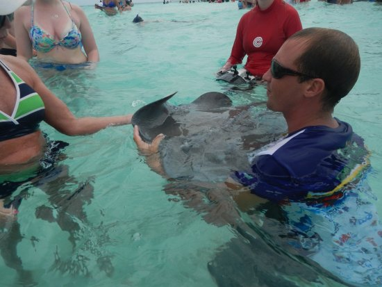 George Town, Grand Cayman : Capt Ben holding a stingray