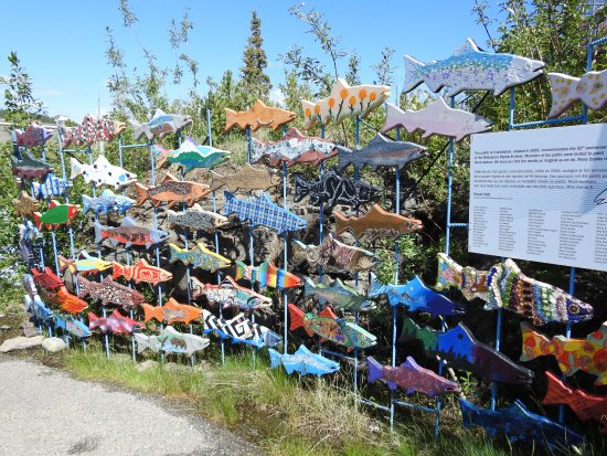 Whitehorse Fishway: Art display at the Fishway