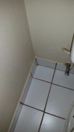 Modesto, CA: Filthy grout and corners in bathroon