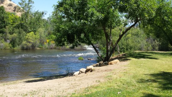 Kaweah Park Resort: The nearby river