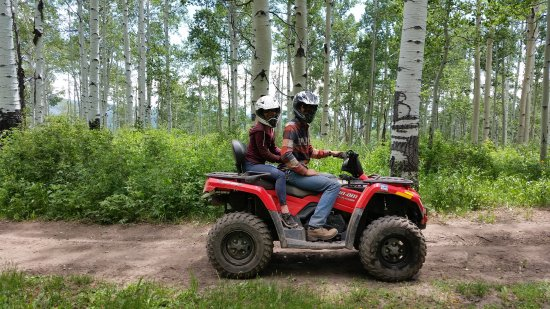Cedaredge, CO: surrounded by quaking aspens
