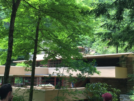 Fallingwater: view of home from approach