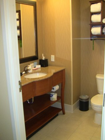 Hampton Inn Wichita Falls Sikes Senter Mall: Bathroom