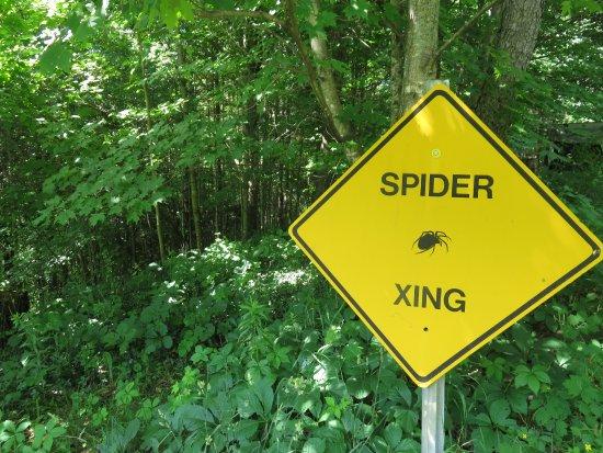 Williamstown, VT: sign