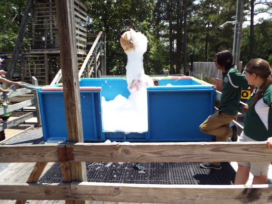 Childersburg, AL: Bubble Machine Tub for little ones to play in...super cool.
