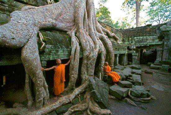 Angkor Driver Bun